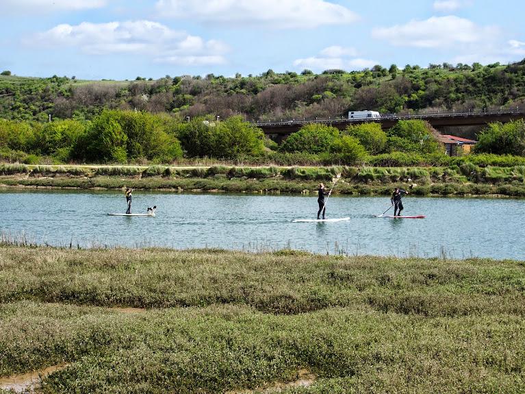 paddleboarding river adur