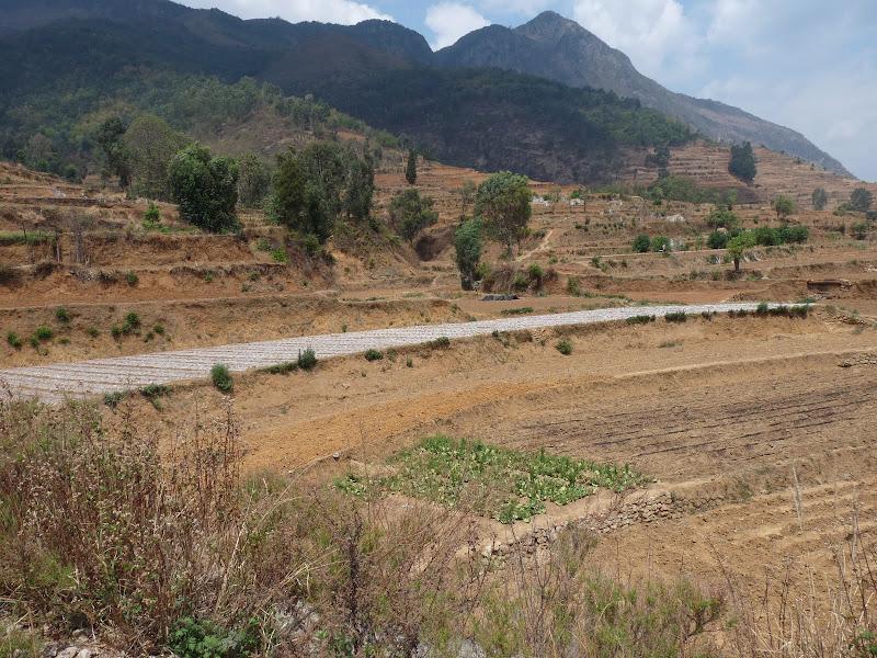 Chine .Yunnan . Lac au sud de Kunming ,Jinghong xishangbanna,+ grand jardin botanique, de Chine +j - Picture1%2B035.jpg