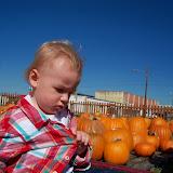 Pumpkin Patch - 115_8264.JPG