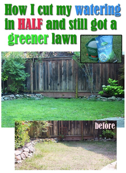 Get a green lawn on half the water..It is possible. Even in the middle of the California Drought.