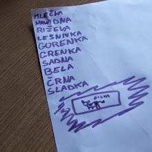 MČ spomladovanja 2014, 28-30.03.2014, Pavlica, Ilirska Bistrica - DSCF7281.JPG