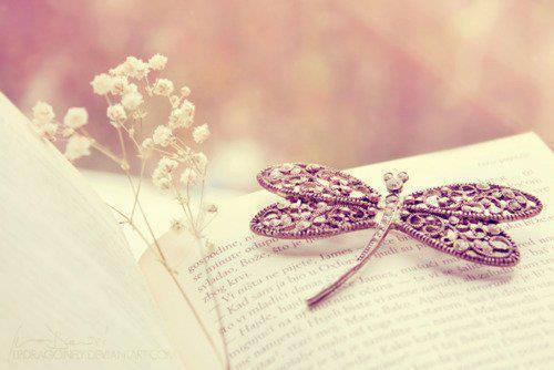Imagen fondo libro flores prendedor mariposa