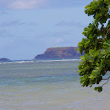 06-25-13 Annini Reef and Kauai North Shore - IMGP9336.JPG