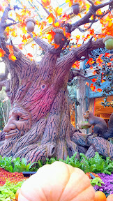 Details inside the Bellagio Conservatory & Botanical Gardens. Autumn Harvest 2014 theme.