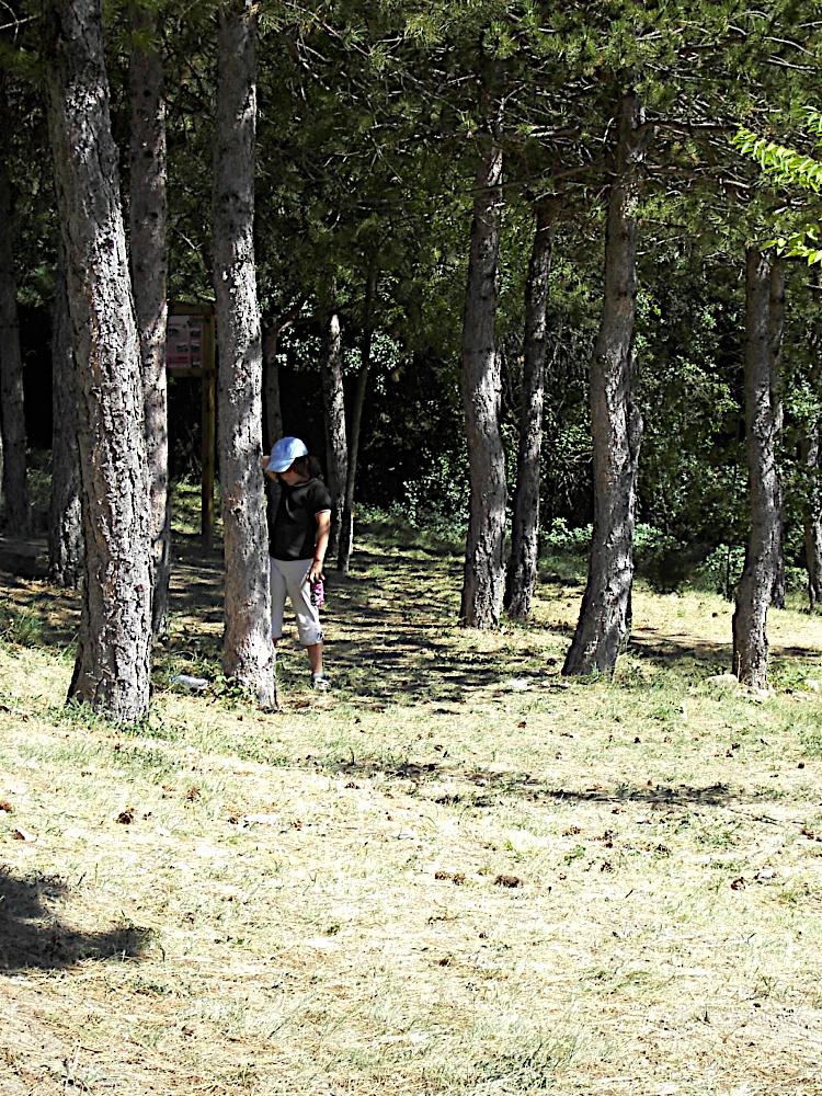 Griebal 2006 - PICT1628.JPG