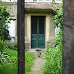 Courette au chat rue Saint-Paul