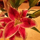 Bouquets - 101_0108.JPG