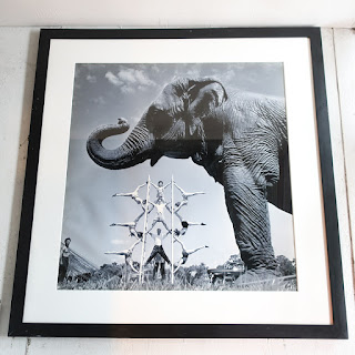 Loomis Dean Large Scale Circus Photograph