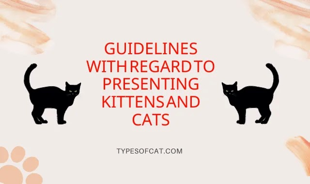 Guidelines With Regard to Presenting Kittens and Cats