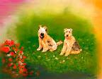 Les chiens de Fred 50 x 40  Juillet 2006