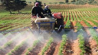 Le ministre palestinien de l'Agriculture fier des réalisations du secteur de l'agriculture en Algérie