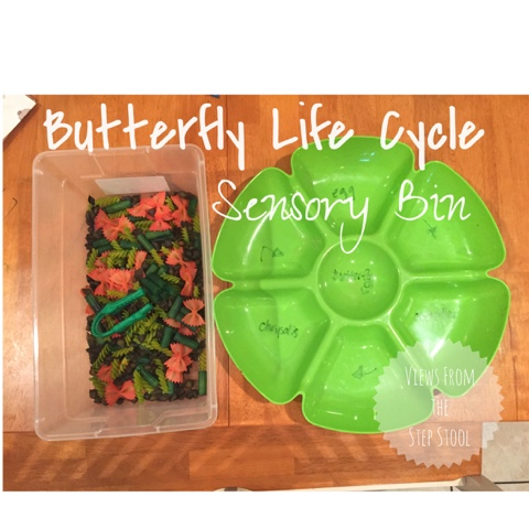 Butterfly Life Cycle Sensory Bin Views From A Step Stool
