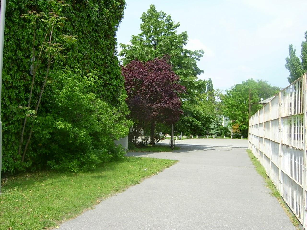 Képek az iskoláról - image013.jpg
