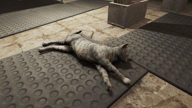 Mods der Woche: Katzen liebender Modder verbessert Fallout 4s langsame, dumme Haustiger, und mehr