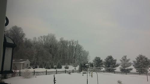 Hoar Frost 2015 feb