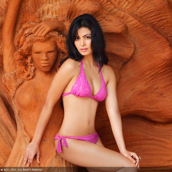 Femina Miss India International 2011 Ankita Shorey looks gorgeous in a pink bikini as she poses for the month of October.