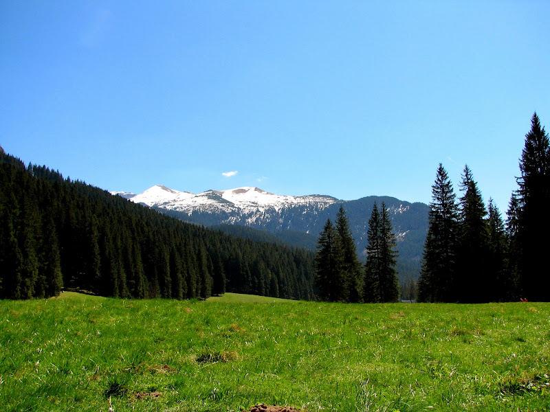 Panorama Tatr w Dolinie Kościeliskiej
