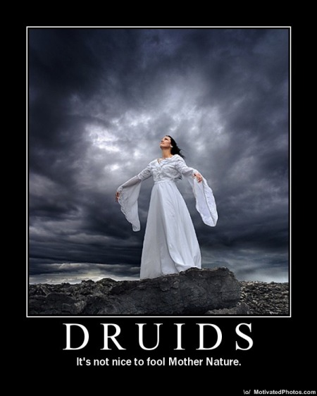 Druids Demotivator, Celtic And Druids