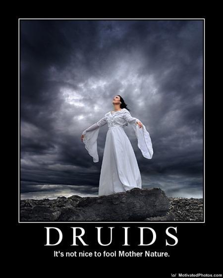 Druids Demotivator, Celtic And Druids