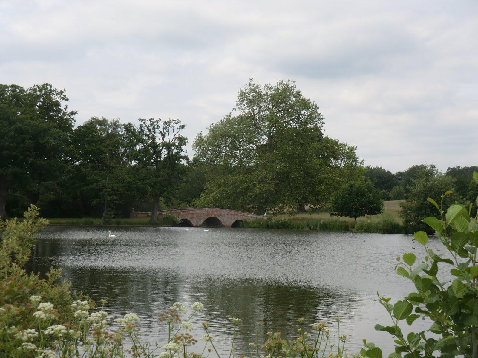 CIMG8715 Tundry Pond
