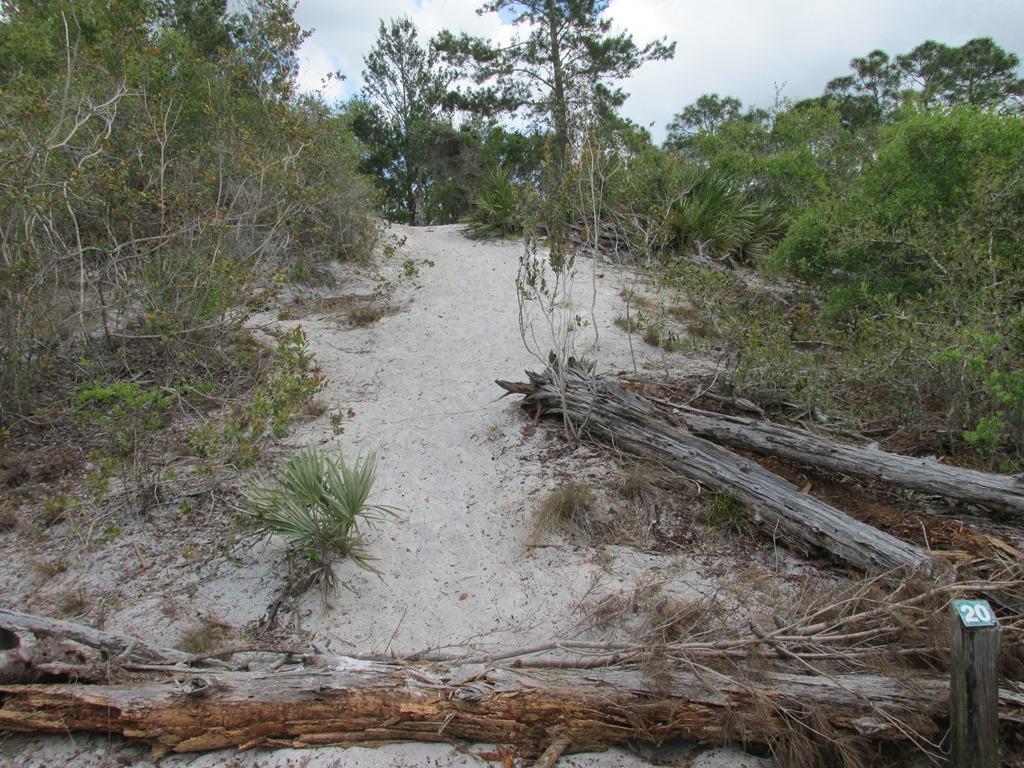 [Ais-Trail---Indian-Mound-15]