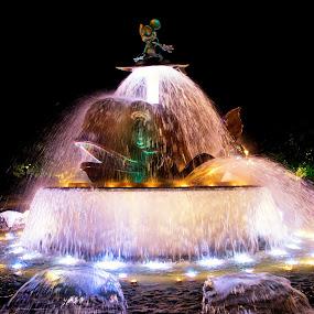 HK Disneyland Fountain by Jun Robato - City,  Street & Park  Amusement Parks ( night shots, hong kong, fountains, disneyland, disney )