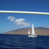 Hawaii Day 7 - 100_7900.JPG