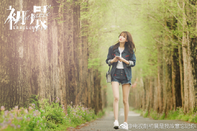 Irreplaceable Love China Drama