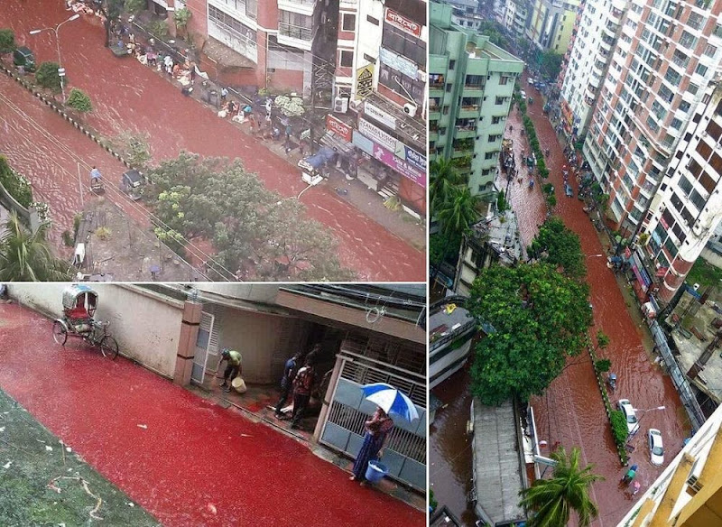 rivers-of-blood-eid-dhaka-1
