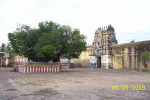 Thiru Thuruthi (Kuttalam) Temple View With Sthala Vriksham