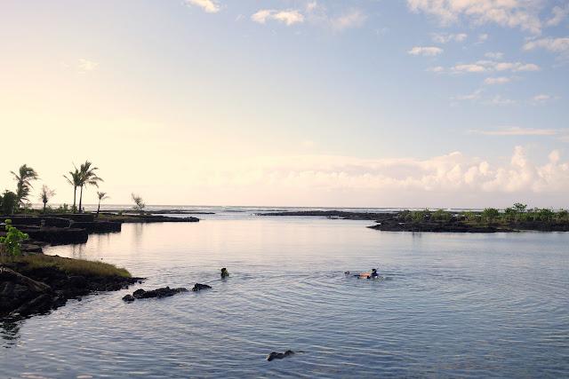 Big Island Snorkeling Spot