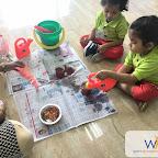 Carrot Plantation Activity (Playgroup) 5-7-2017