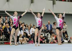 Han Balk Fantastic Gymnastics 2015-9594.jpg