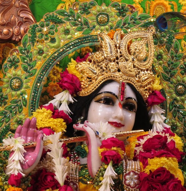 ISKCON Vallabh vidhyanagar Deity Darshan 11 jan 2017 (13)