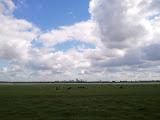 Hollands panorama met Rotterdam op de achtergrond
