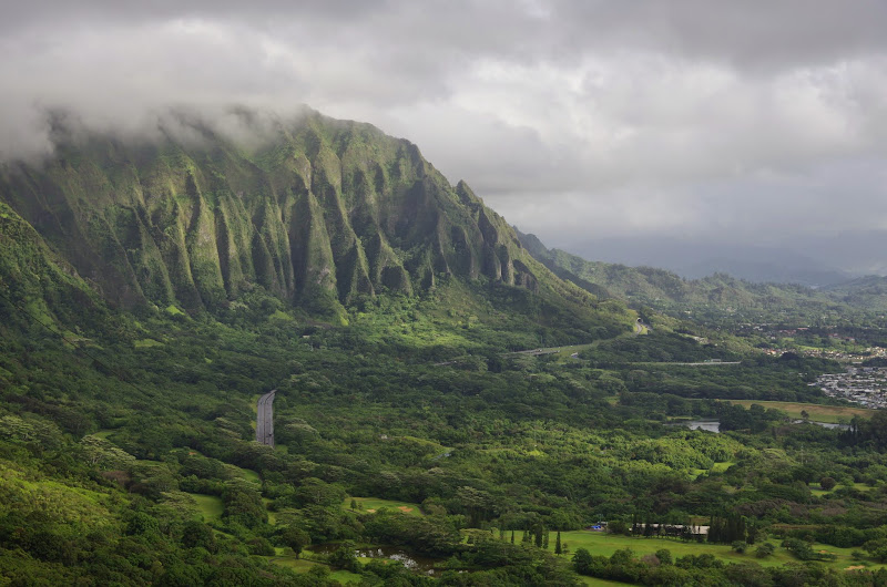 06-18-13 Waikiki, Coconut Island, Kaneohe Bay - IMGP6957.JPG