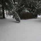 tn_lachaux-2010-12-08.jpg