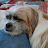 Sonny Solares avatar image