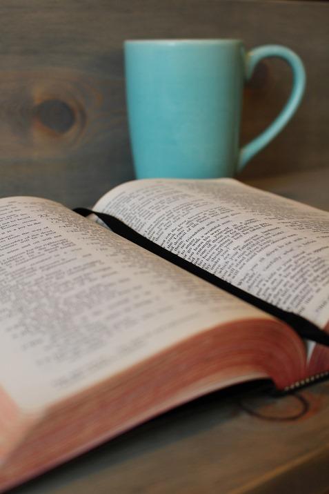 bible-896219_1920