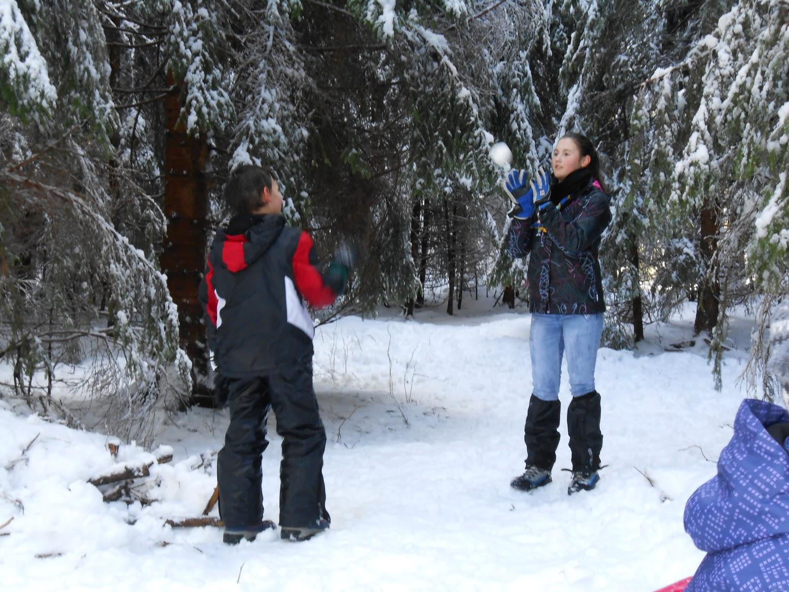 MČ zimovanje, Črni dol, 12.-13. februar 2016 - DSCN5019.JPG