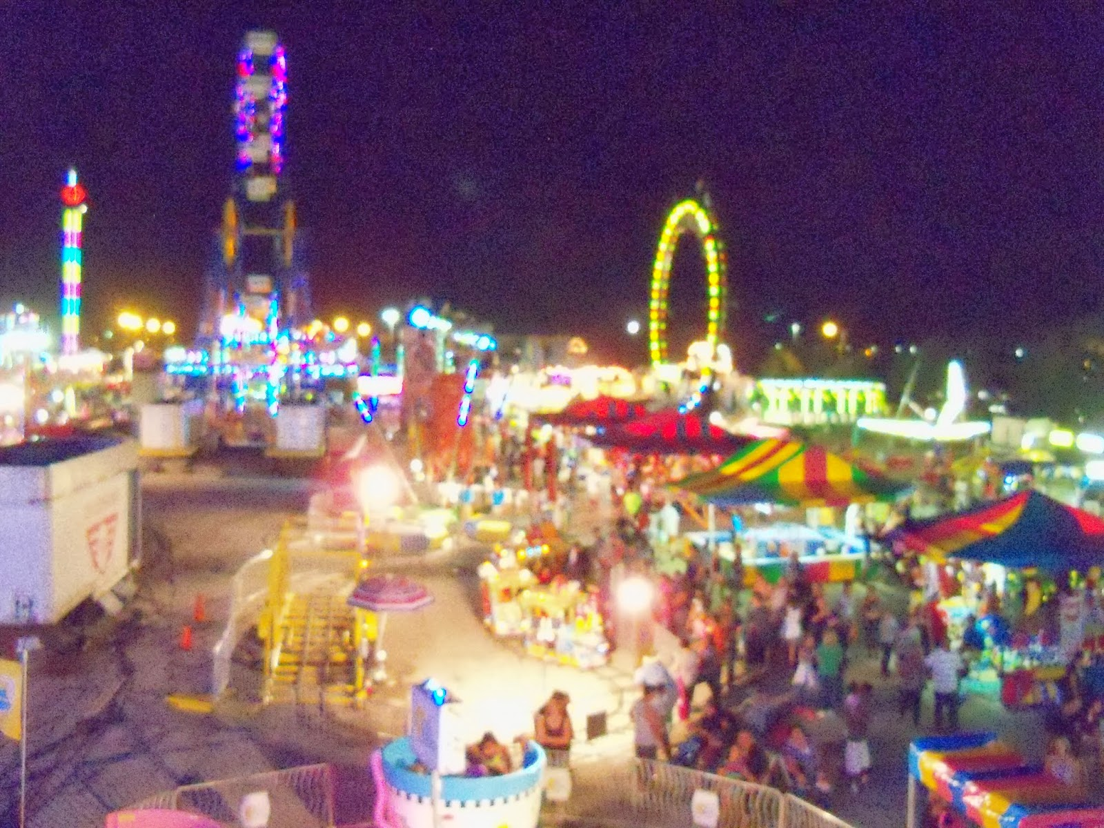 Fort Bend County Fair 2013 - 115_8035.JPG