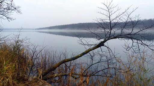 Foggy damp weather the end of the week as seen on shore of Little Sugarbush