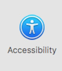Accessibility preference pane icon