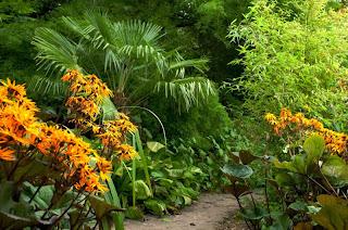 Borde Hill Garden - Round Dell