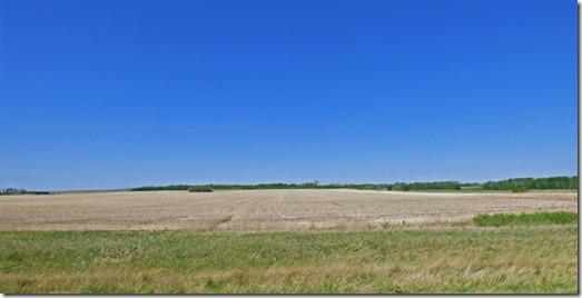 West of Grande Prarie