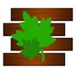 New Wood T