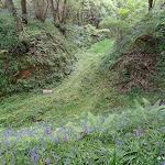Bois de la Barre : un chemin de convoye