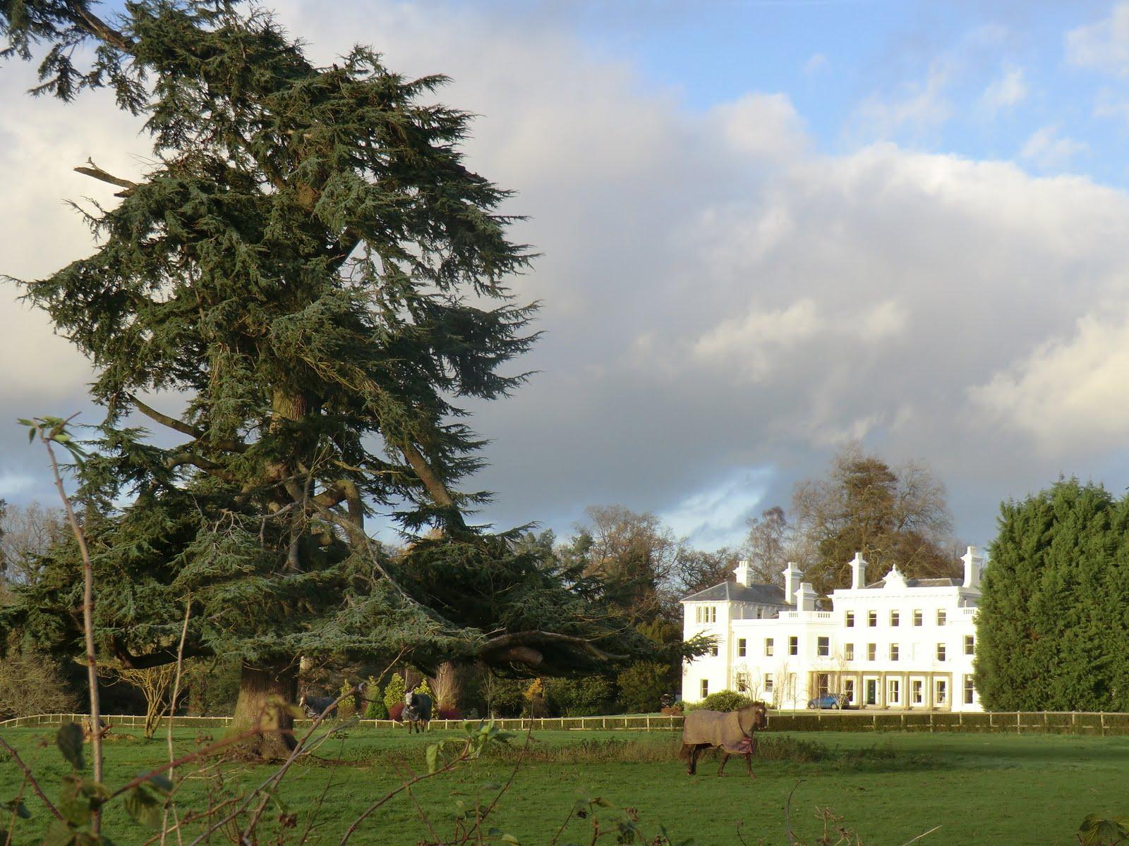 CIMG1773 Ashurst Manor