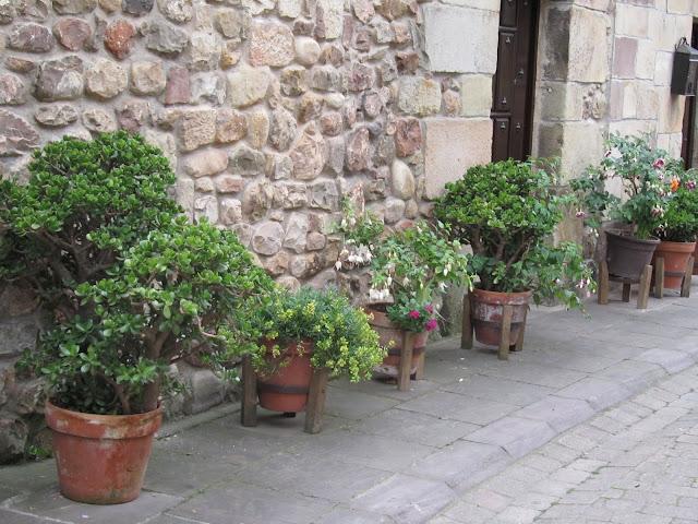 Paseo por Cartes (Cantabria) IMG_0929