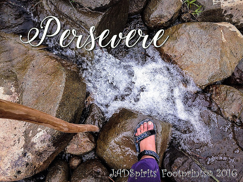 Persevere, my 2017 Word of the Year